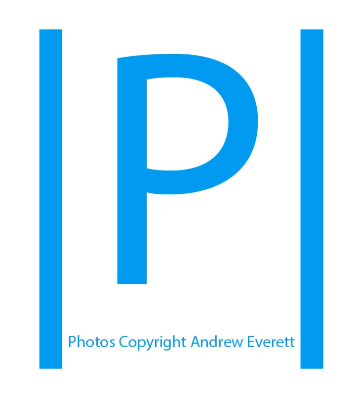 | P | Logo