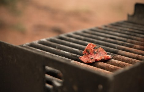 Leaf on a grill